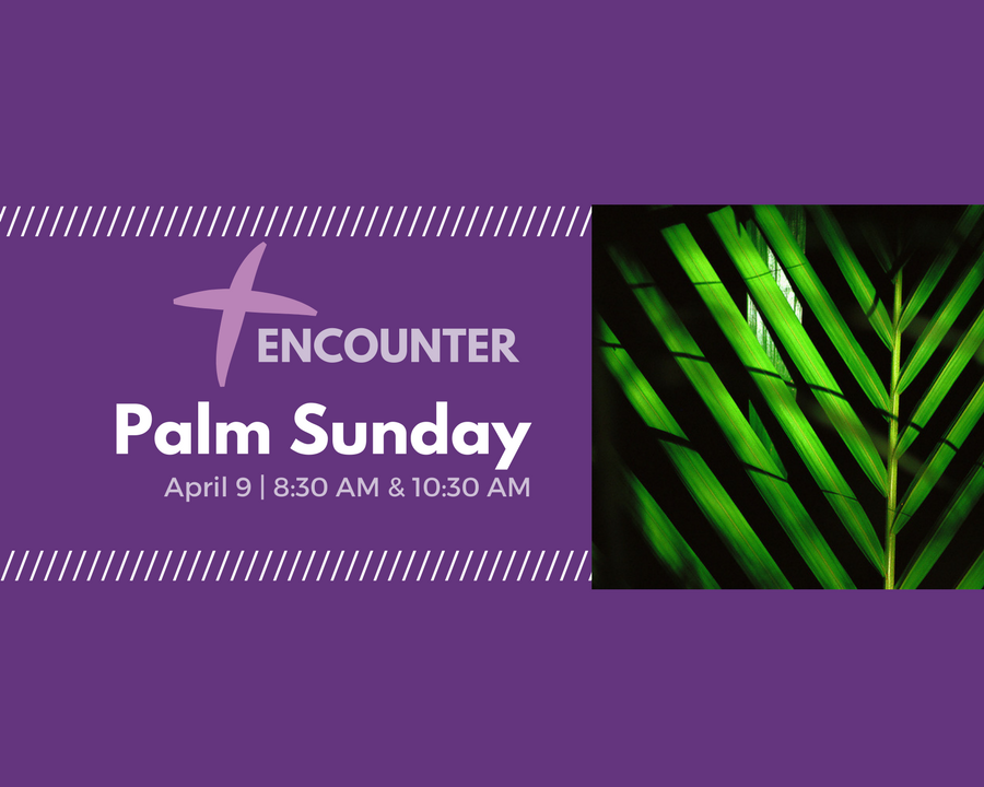 Palm Sunday Enounter Slider
